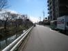 Shinsakagawa_20080305