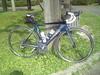 Cycling_20080720