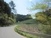 Cycling_20100503_6